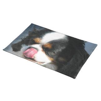 Spaniel Dog Placemat