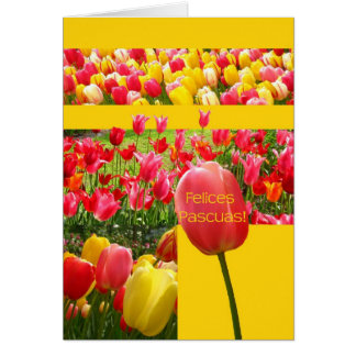 Spanish Easter Tulips Greeting Card