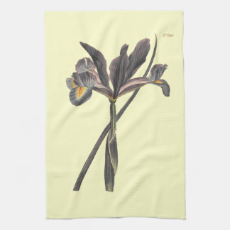Spanish Flag Iris Illustration Tea Towel