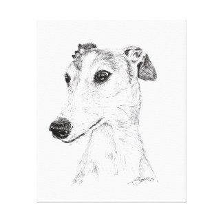Spanish Greyhound Canvas
