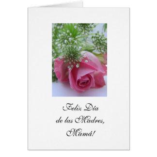 Spanish: Mother's day/ Dia de las madres vs 1 Card