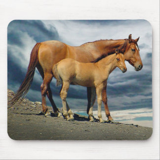 Spanish Mustang Mare Mouse Mat