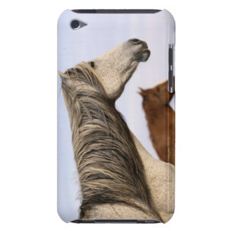 Spanish Mustangs iPod Touch Covers