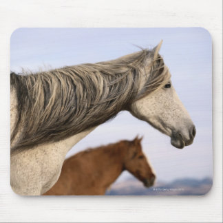 Spanish Mustangs Mouse Mat