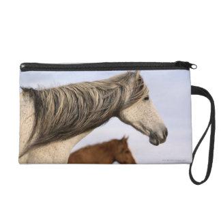 Spanish Mustangs Wristlet