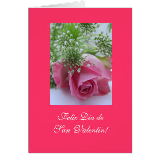 Spanish: Valentine's Day/ Dia San Valentin Greeting Card