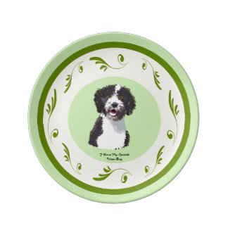 Spanish Water Dog on Green Swirls (sm) Porcelain Plates