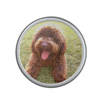 spanish water dog w toy.png bluetooth speaker