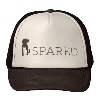 SPARED hat - brown and tan