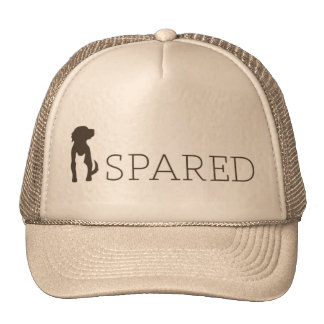 SPARED hat - tan
