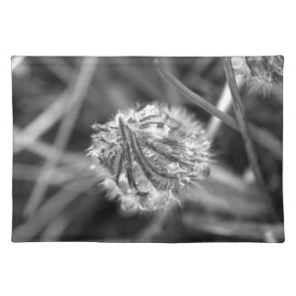 Sparkling Crocus in Black and White Place Mats