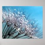 Sparkling Dew Dandelion Sky Blue Background Poster