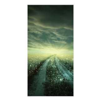 Sparkling Dew filled field during Sunrise Customized Photo Card