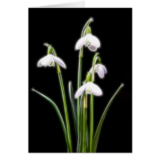 Sparkling Snowdrops Card