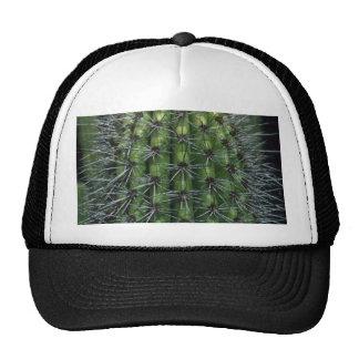 Sparkling Thorns Hat