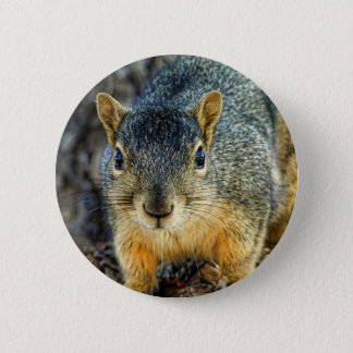 Sparky the Squirrel Button
