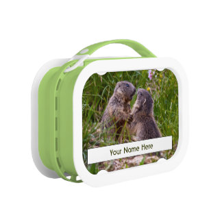 Sparring Partners Personalised Lunchbox