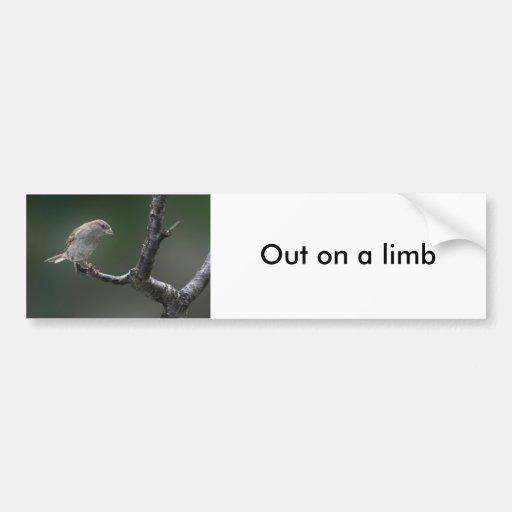 Sparrow  1 bumper stickers