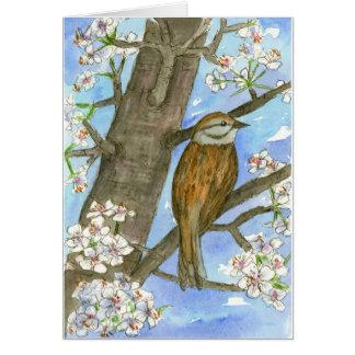 Sparrow Bird Nature Wildlife Watercolor Thank You Card