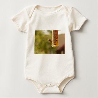 Sparrow eating baby bodysuit
