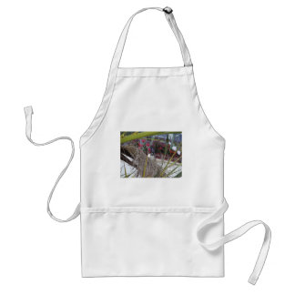 Sparrow in southern Spain Standard Apron
