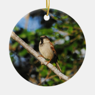 Sparrow on a Branch Round Ceramic Decoration