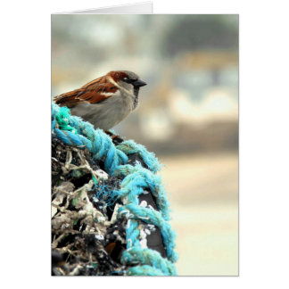 Sparrow on the Fishing Nets Greeting Card