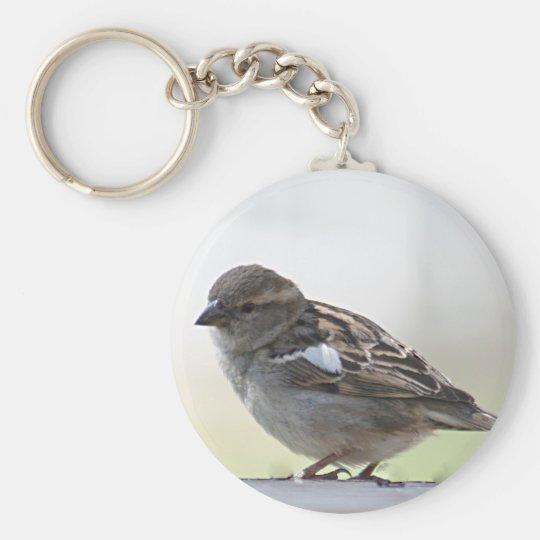 Sparrow photo key ring