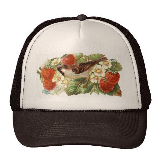 Sparrow & Red Strawberries - Vintage Illustration Hats