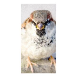 Sparrow - The Warrior Photo Card