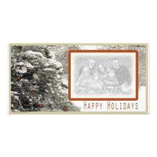 Sparrows in snowy tree holiday Photo Card