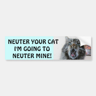 Spay and Neuter your cat. Shocked Kitty Bumper Sticker