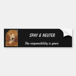 Spay & Neuter bumper sticker