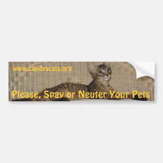 Spay or Neuter Your Pets Bumper Sticker