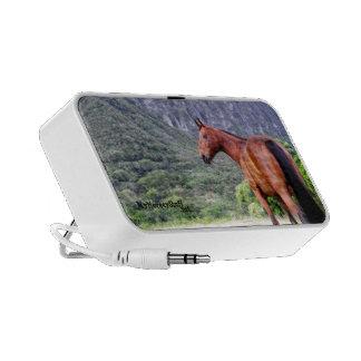 Speaker, portable, horse, equestrian travel speakers