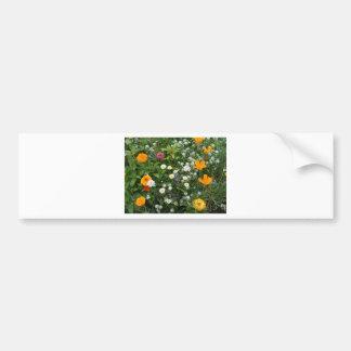 Special Bloom Bumper Sticker