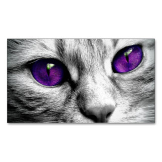 Special Cat with Purple Eyes Magnetic Business Cards