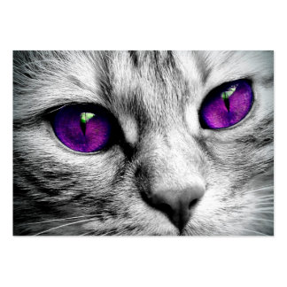 Special Cat with Purple Eyes Pack Of Chubby Business Cards