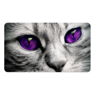 Special Cat with Purple Eyes Pack Of Standard Business Cards