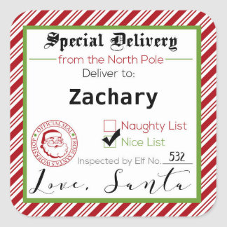 Special Delivery from Santa Gift Tag Stickers