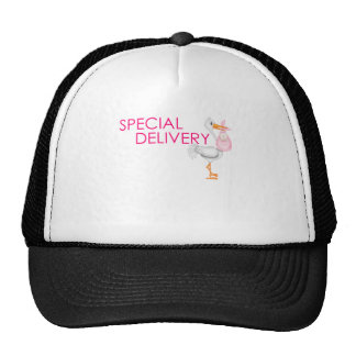 SPECIAL DELIVERY GIRL.png Mesh Hat