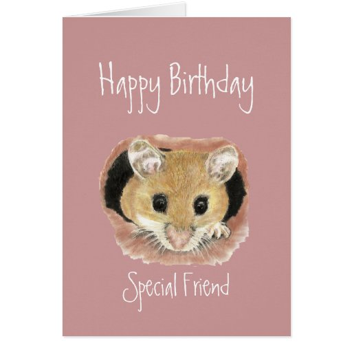 Special Friend Birthday Cute  Mouse Greeting Card