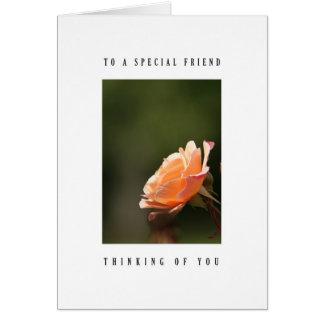 Special friend - tea rose card