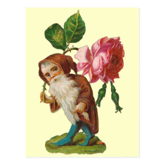 Special Vintage Gnome With A Pink Rose Postcard