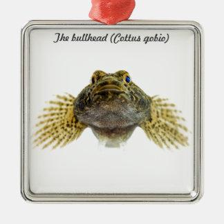 Species: Bullhead Silver-Colored Square Decoration