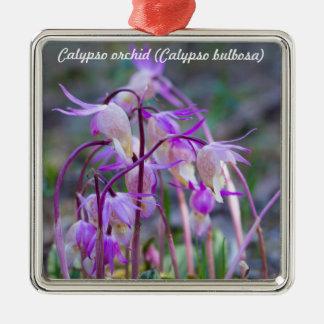 Species: Calypso orchid Christmas Ornament