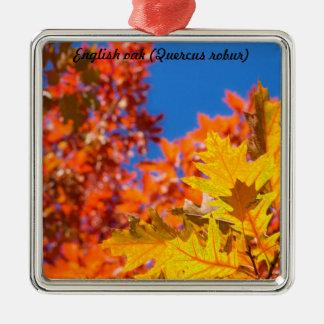 Species: English oak Silver-Colored Square Decoration