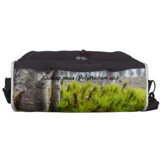 Species: Haircap moss Laptop Shoulder Bag