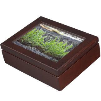 Species: Oblong Woodsia Keepsake Box