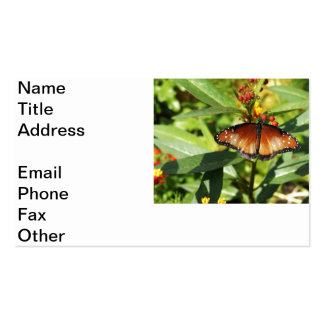 Speckled Butterfly Pack Of Standard Business Cards